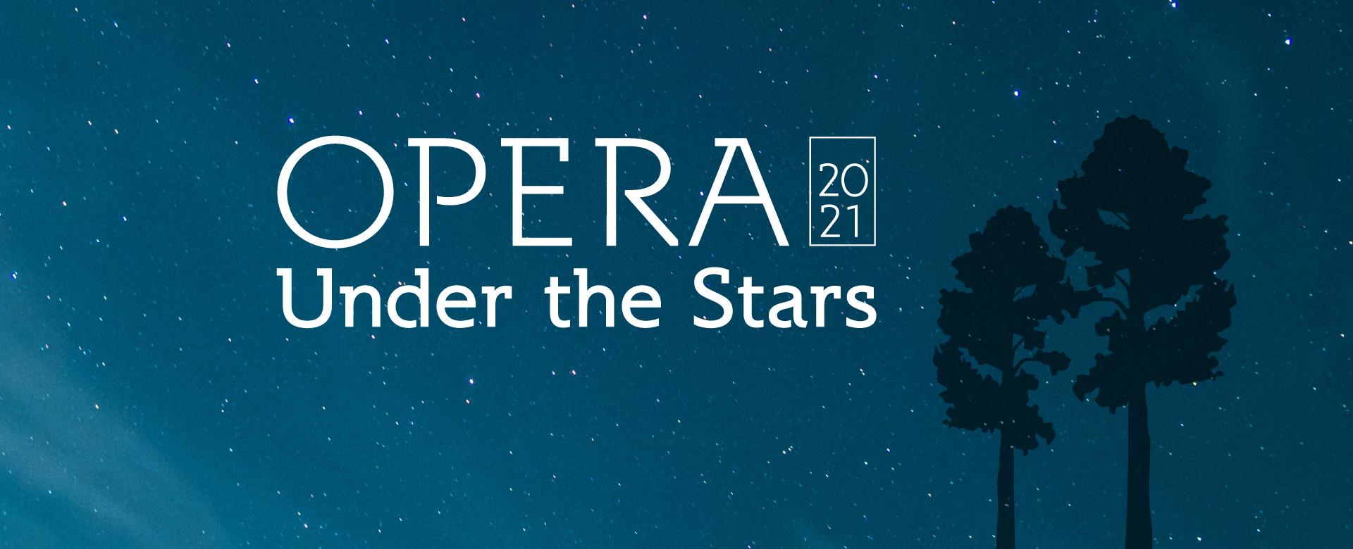 Opera Under the Stars banner
